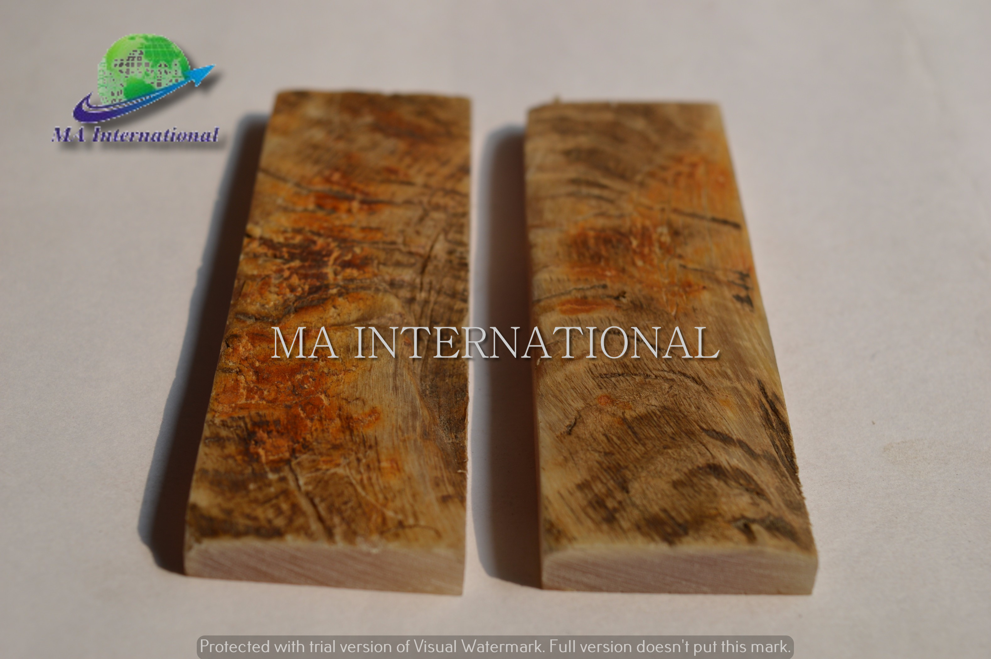 NATURAL-RAM-HORN-FLAT-SCALE-MARHS02-1